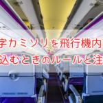 T字カミソリを飛行機内に持ち込むときのルールと注意点